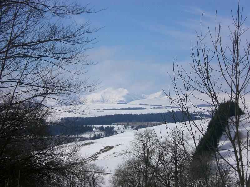 Février sous la neige à Allanche - Page 2 Cimg6431