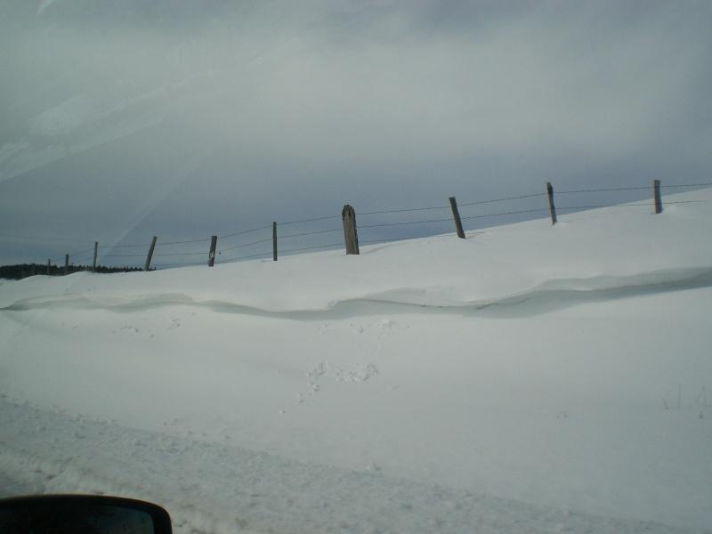 Février sous la neige à Allanche - Page 2 Cimg6439