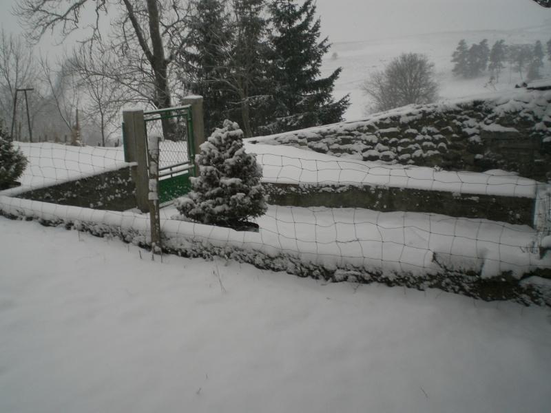 Le cézallier en Mars 2010 Cimg6526