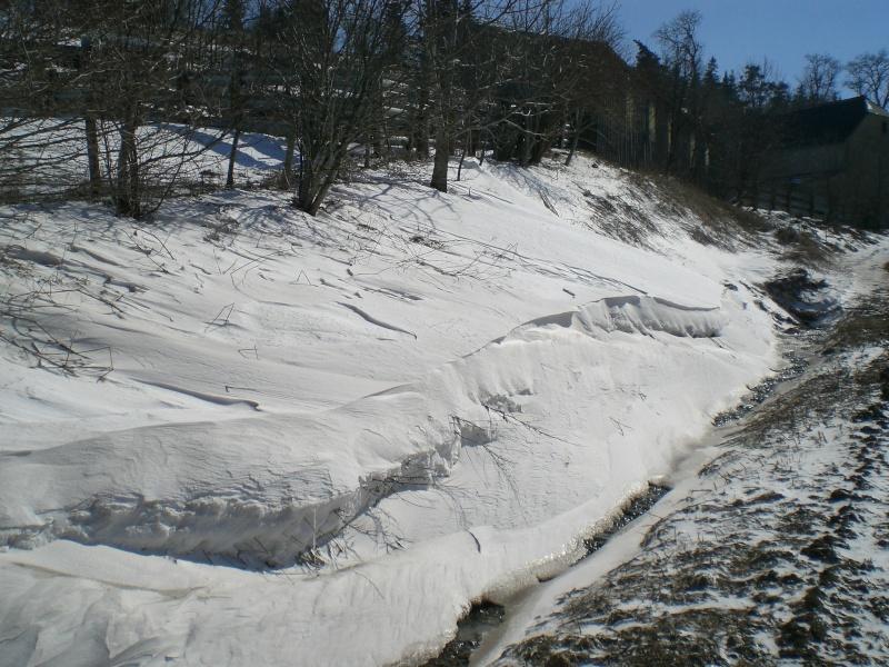 Le cézallier en Mars 2010 Cimg6544