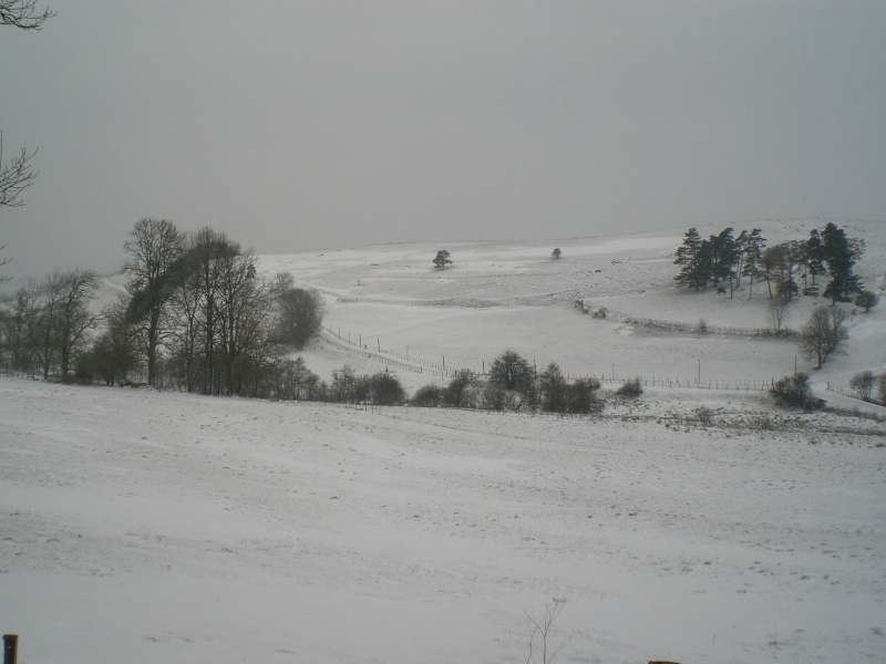 Le cézallier en Mars 2010 Cimg6632