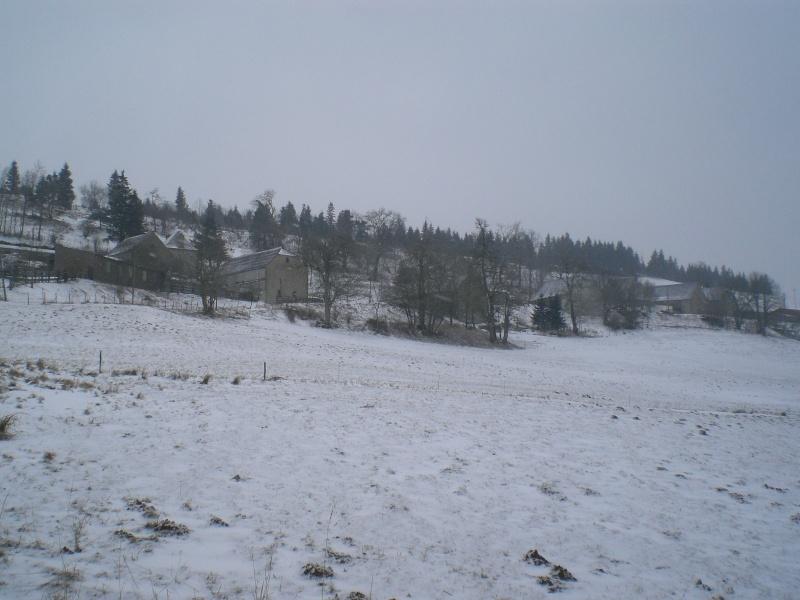 Le cézallier en Mars 2010 Cimg6633