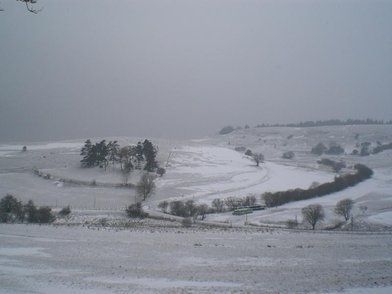 Le cézallier en Mars 2010 Cimg6728