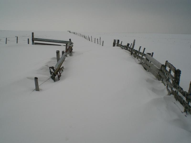 Le cézallier en Mars 2010 Cimg6733