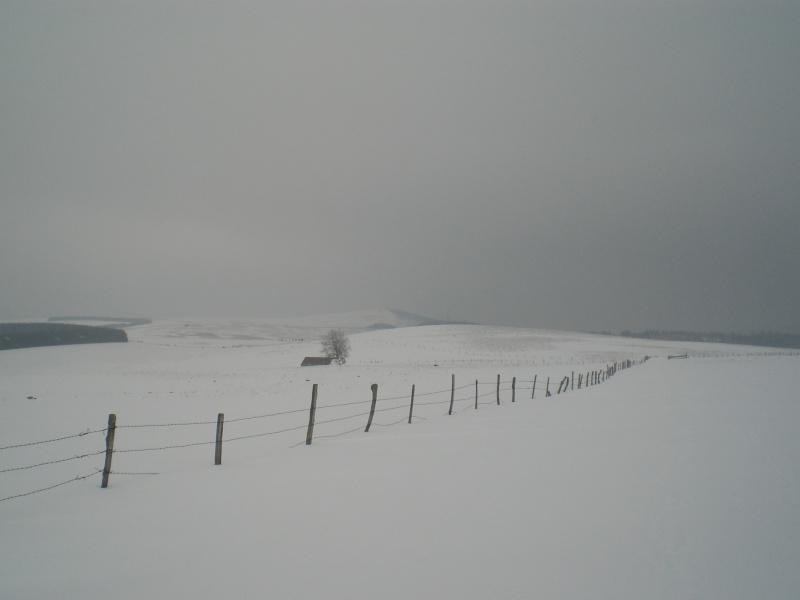 Le cézallier en Mars 2010 Cimg6734