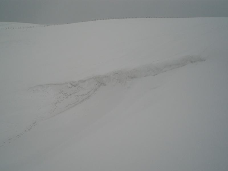 Le cézallier en Mars 2010 Cimg6737