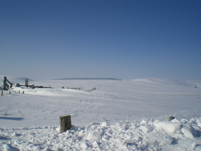 Le cézallier en Mars 2010 Cimg6821