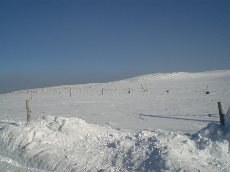 Le cézallier en Mars 2010 Cimg6822