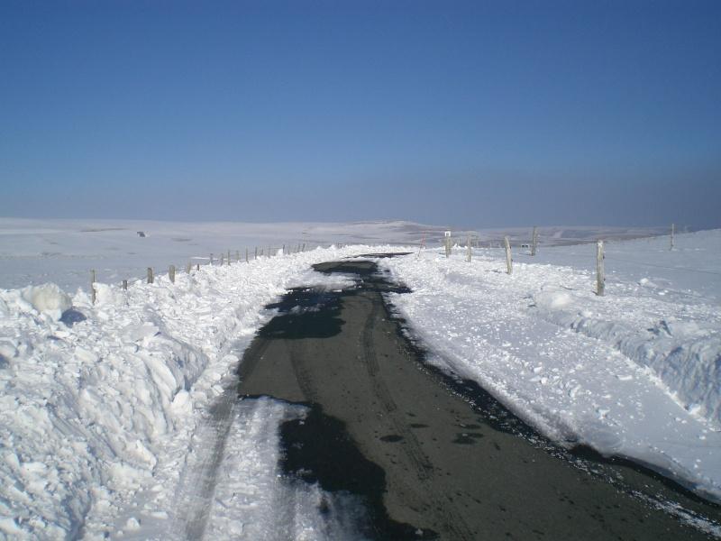 Le cézallier en Mars 2010 Cimg6823