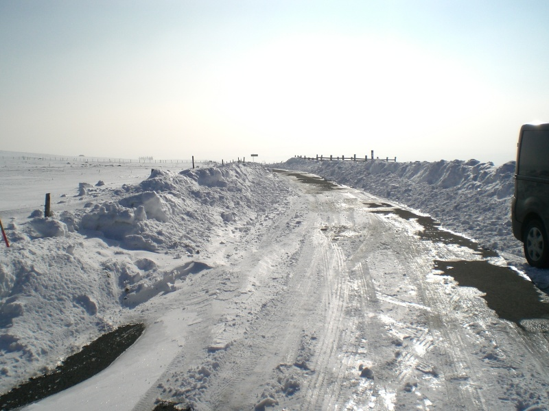 Le cézallier en Mars 2010 Cimg6824