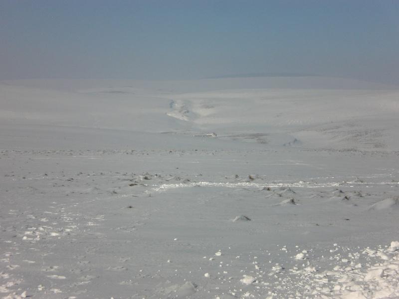 Le cézallier en Mars 2010 Cimg6825