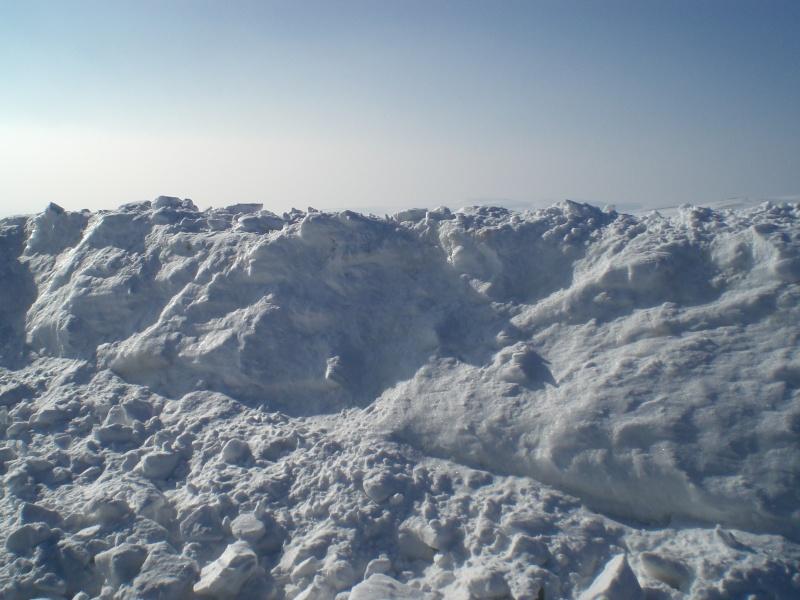 Le cézallier en Mars 2010 Cimg6826