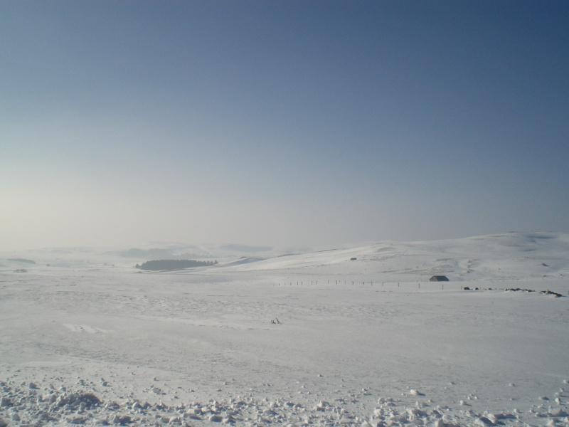 Le cézallier en Mars 2010 Cimg6828