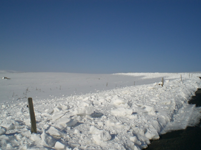 Le cézallier en Mars 2010 Cimg6831