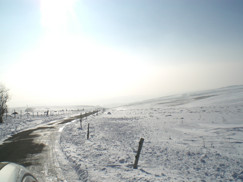 Le cézallier en Mars 2010 Cimg6832