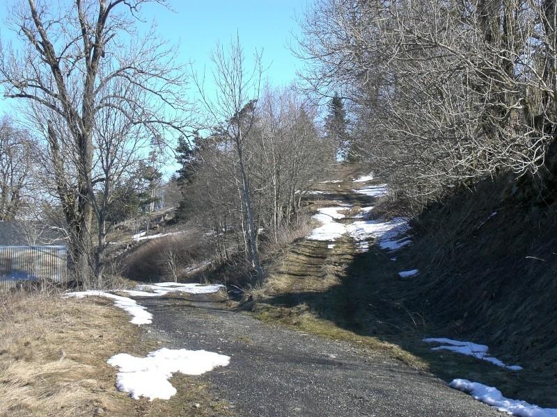 Le cézallier en Mars 2010 Cimg6836
