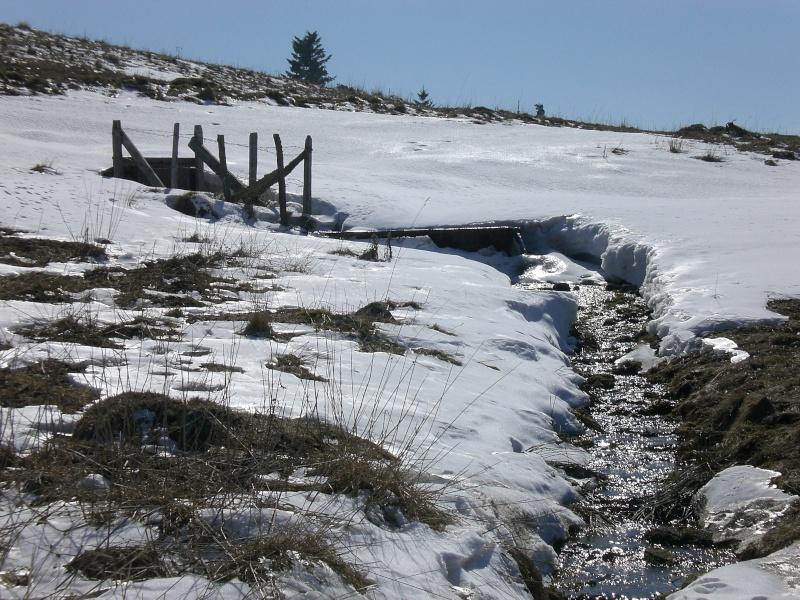Le cézallier en Mars 2010 Cimg6842