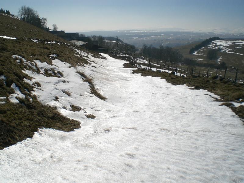 Le cézallier en Mars 2010 Cimg6844
