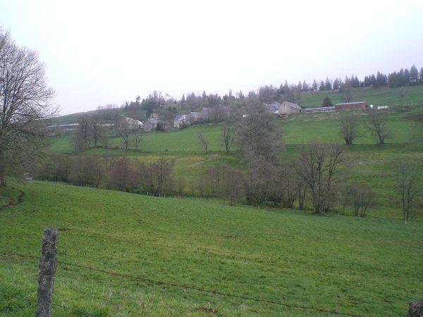 Le cézallier en Mai Cimg7012