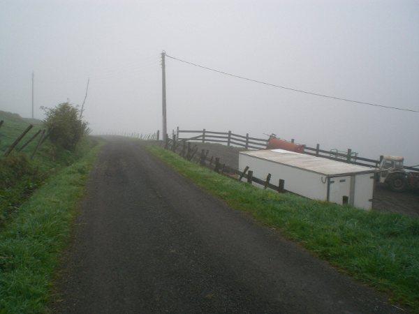 Le cézallier en Mai Cimg7020