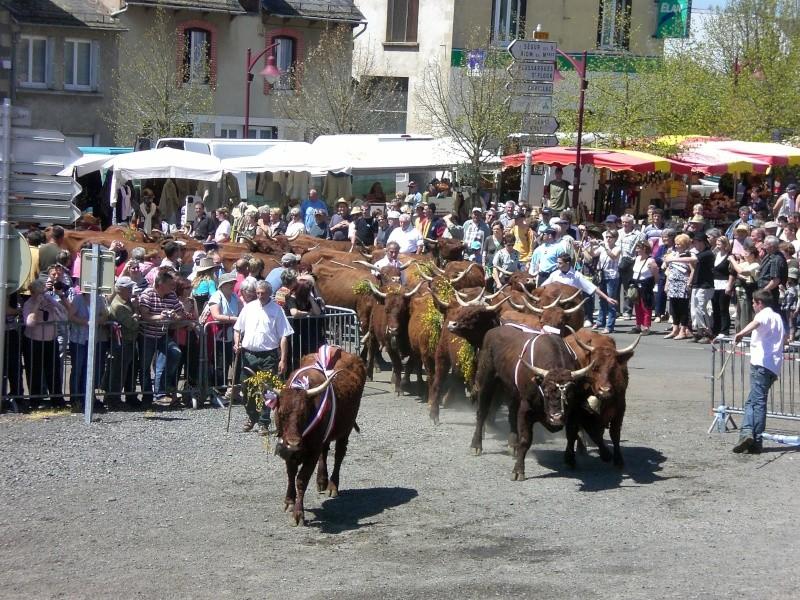 Villes et villages de charme du Cantal Cimg7223