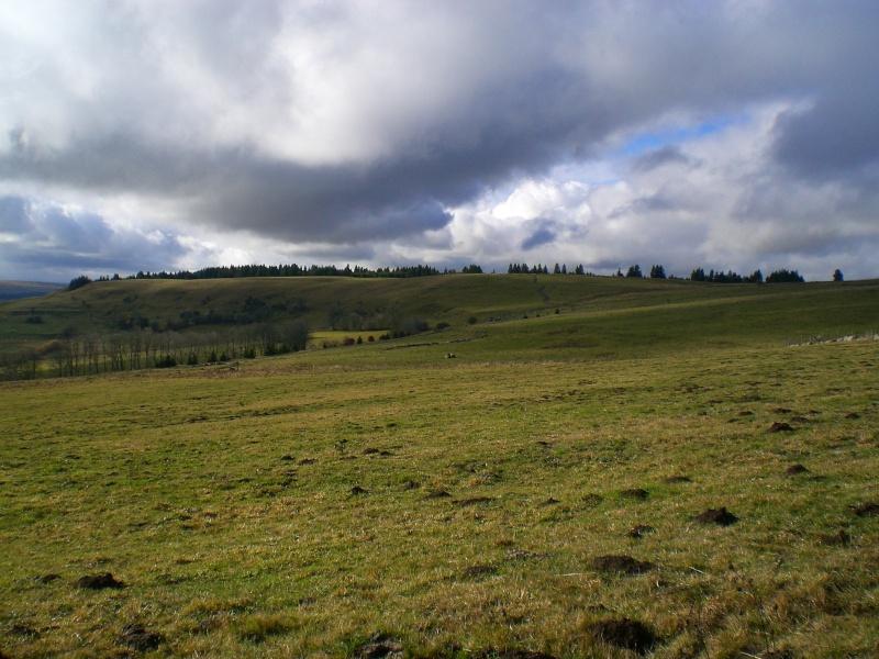 Le Cézallier en Octobre et Novembre 2010 Cimg8217