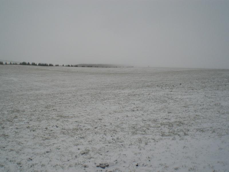 Le Cézallier en Octobre et Novembre 2010 Cimg8222