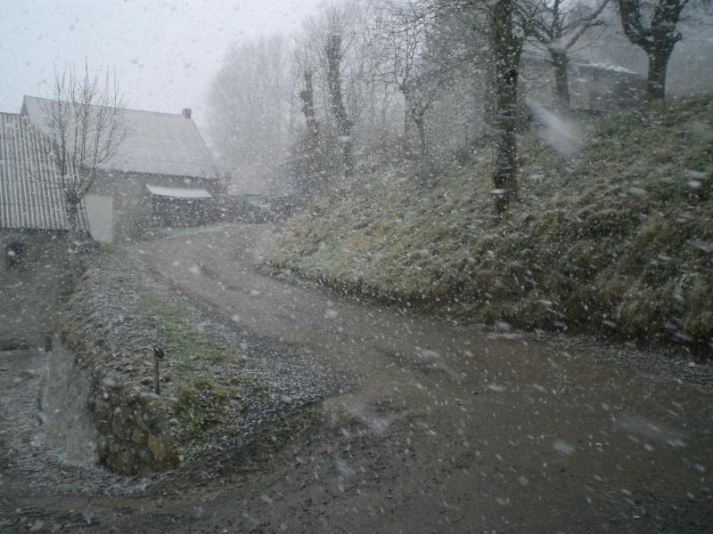 Le Cézallier en Octobre et Novembre 2010 Cimg8226