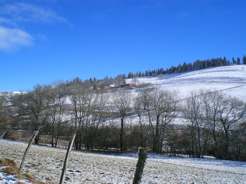 Février 2011 du coté d'Allanche Cimg8912