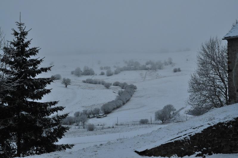 Février 2011 du coté d'Allanche Dsc_1111