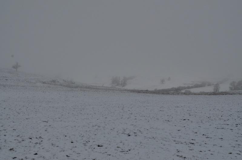 Février 2011 du coté d'Allanche Dsc_1121