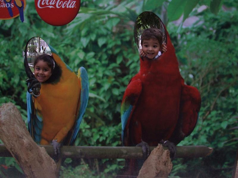 Le Parc aux Oiseaux de Villard les Dombes Dscf0226
