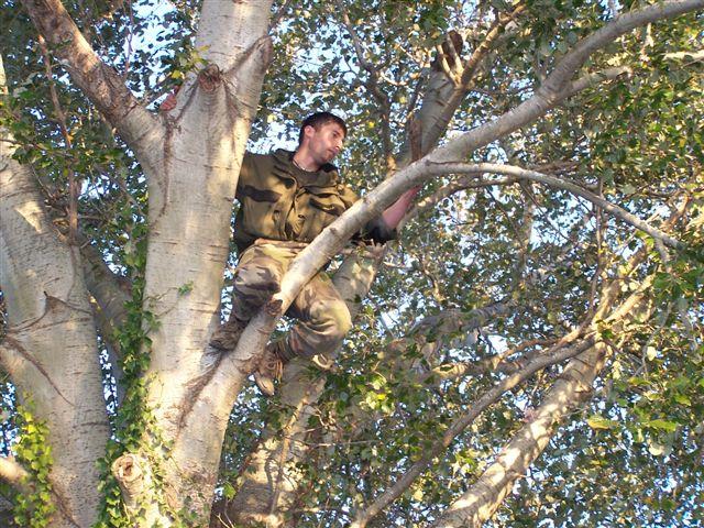 Camargue le 11 novembre 2010 100_3314