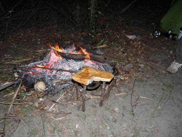Camargue le 11 novembre 2010 Camarg53