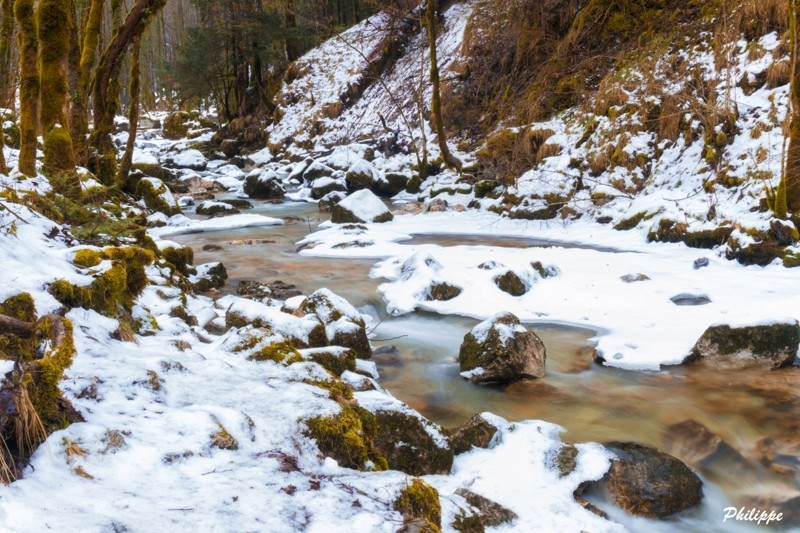 Le Jura sous la neige Jura_111