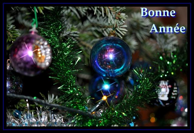 Bonne Année à tous Noel_210