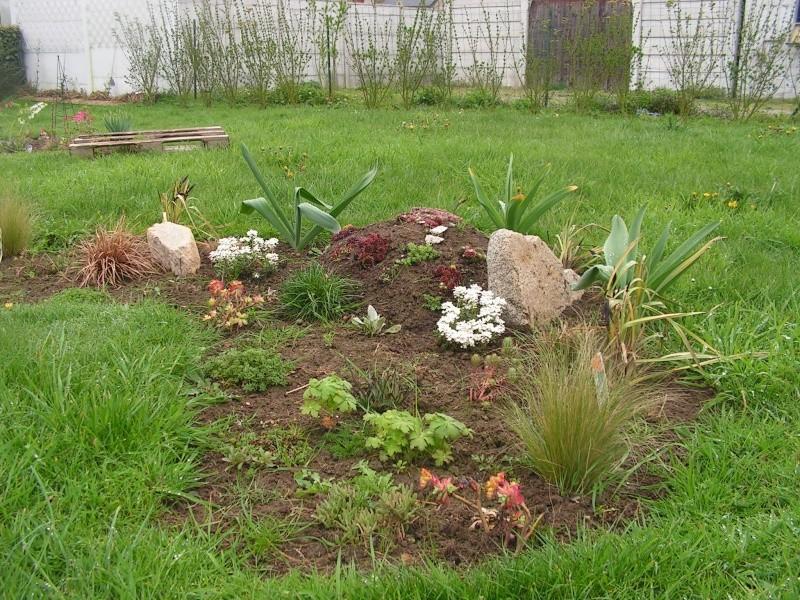 le petit jardin de stef ;o) Foto_b15