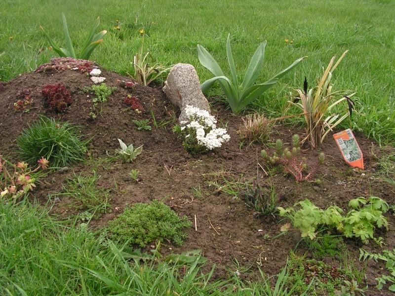 le petit jardin de stef ;o) Foto_b16