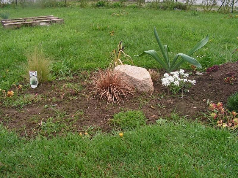 le petit jardin de stef ;o) Foto_b18
