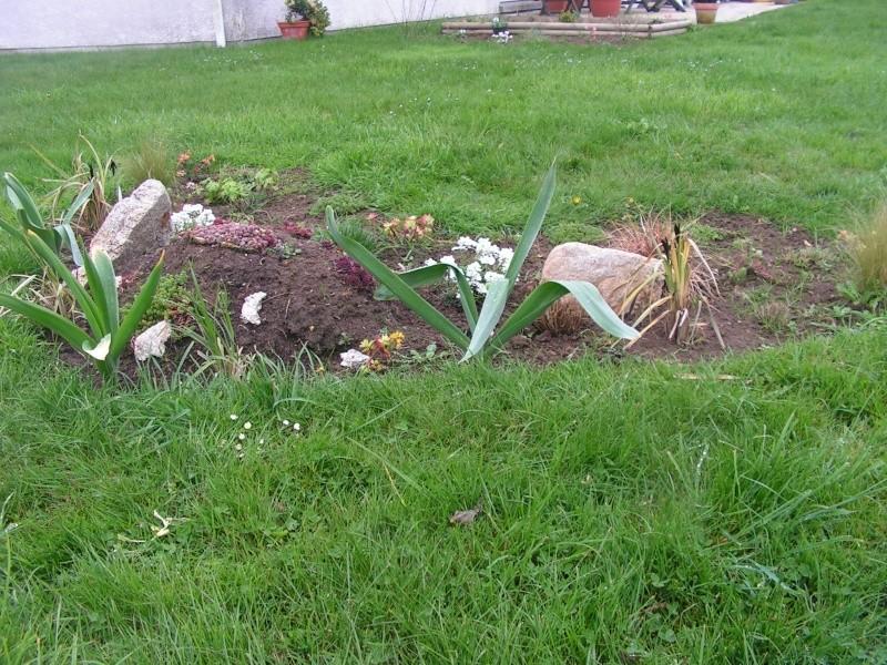 le petit jardin de stef ;o) Foto_b19