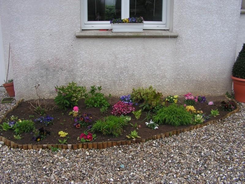 le petit jardin de stef ;o) Foto_b21