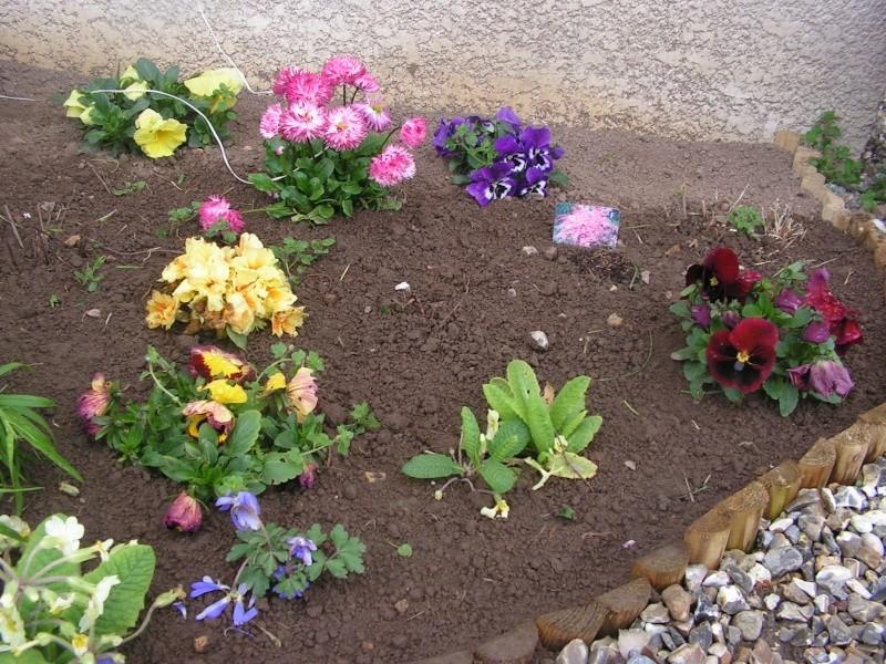 le petit jardin de stef ;o) Foto_b25