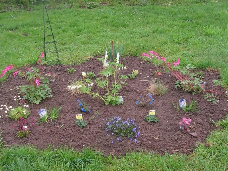 le petit jardin de stef ;o) Foto_b30