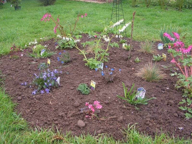 le petit jardin de stef ;o) Foto_b31