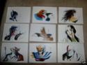 Collection d'odin_nc Carte_17