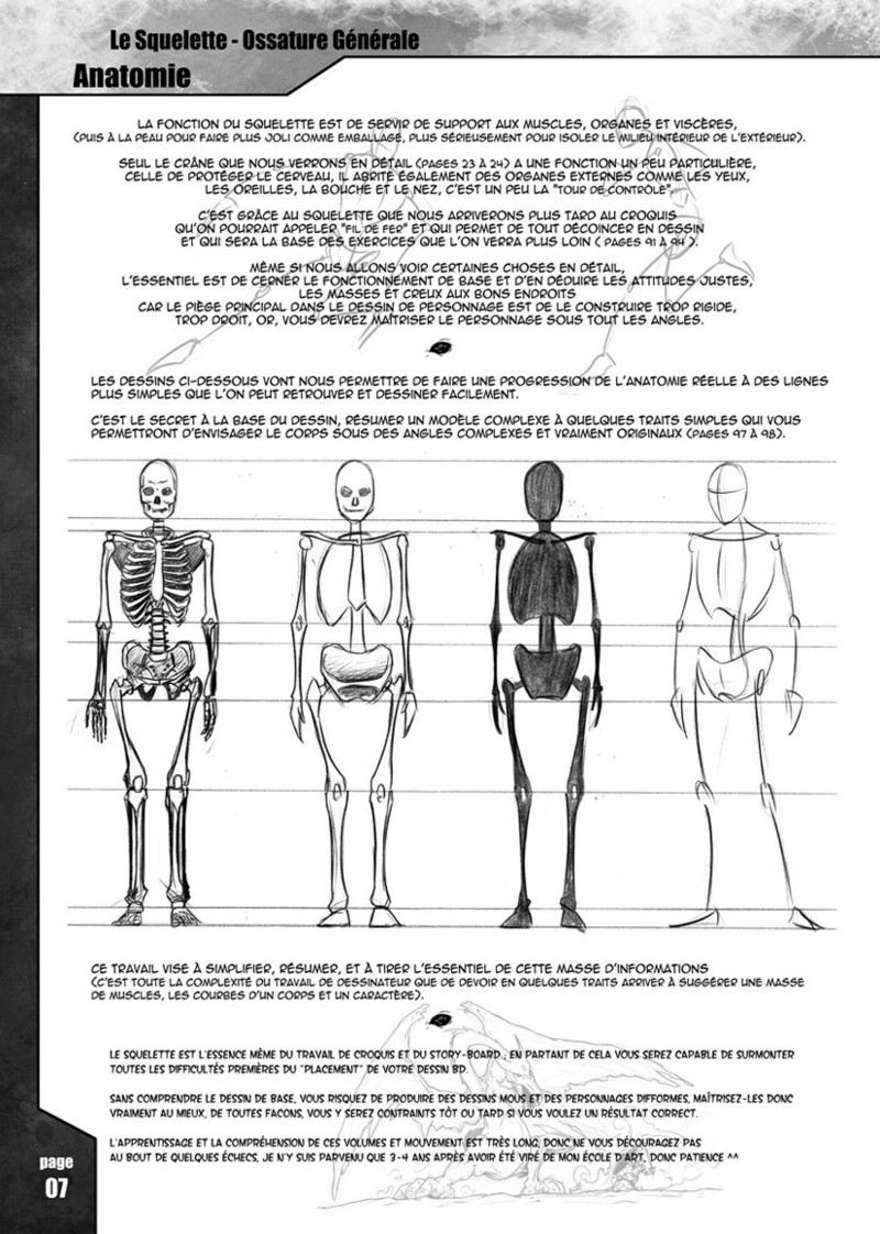 Le squelette humain Book2010