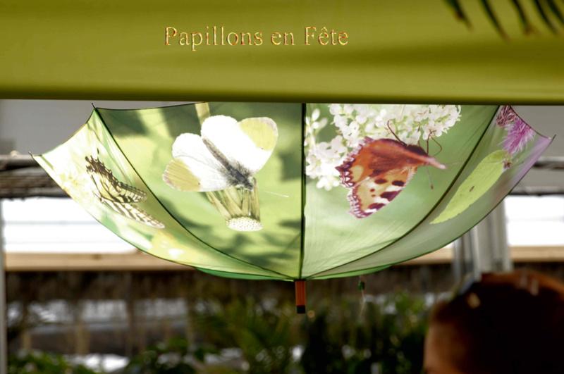 Papillons en Fête jardin Hamel Img_6710