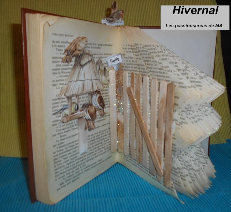 Pliage de livres - Page 4 Dscn0844