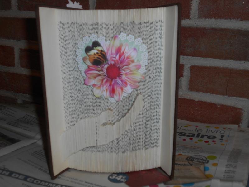 Pliage de livres - Page 4 Dscn0845