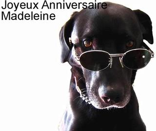 C'est la fête à MadeleineG Madele10